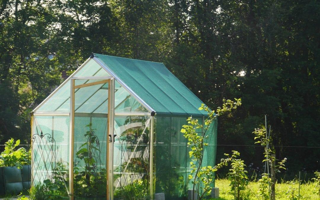construyendo un invernadero