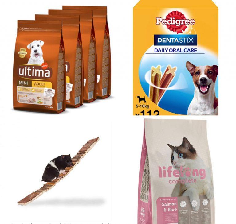 Amazon: 10 descuentos geniales de hoy en alimentación y cuidado para tu mascota