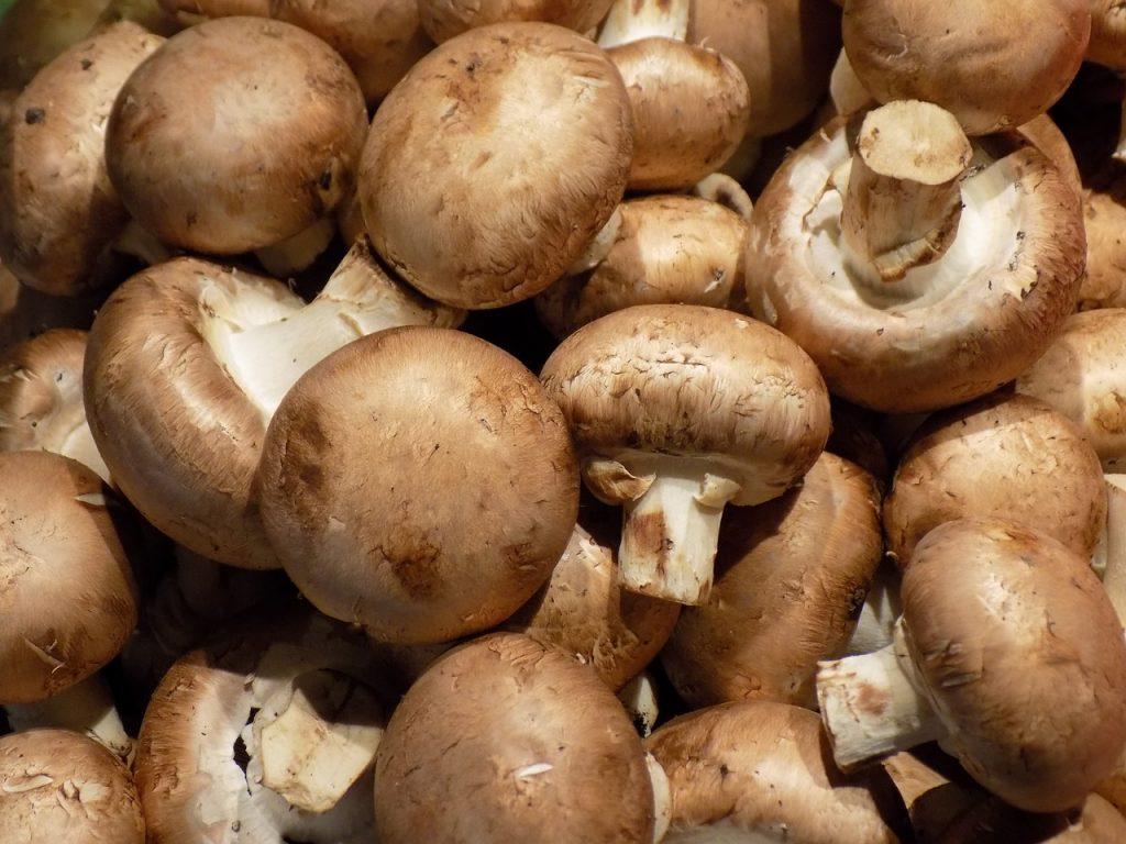 Ingredientes para tus champiñones rellenos
