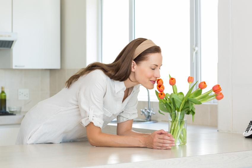 ¿Cómo evitar el olor a tabaco en tu hogar con ambientadores?