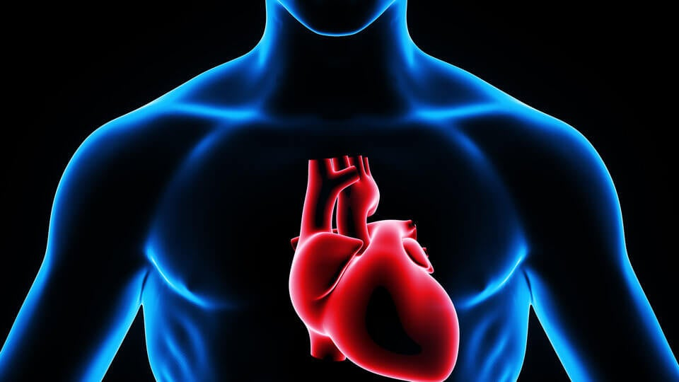Infarto de microcardio