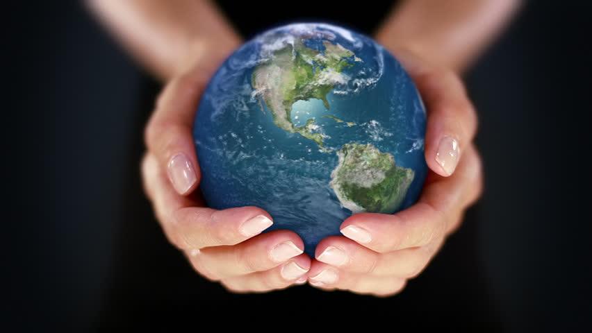 Su valor e importancia en el entorno