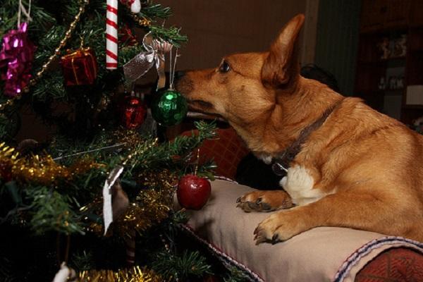 adornos navideños arbol perro gato