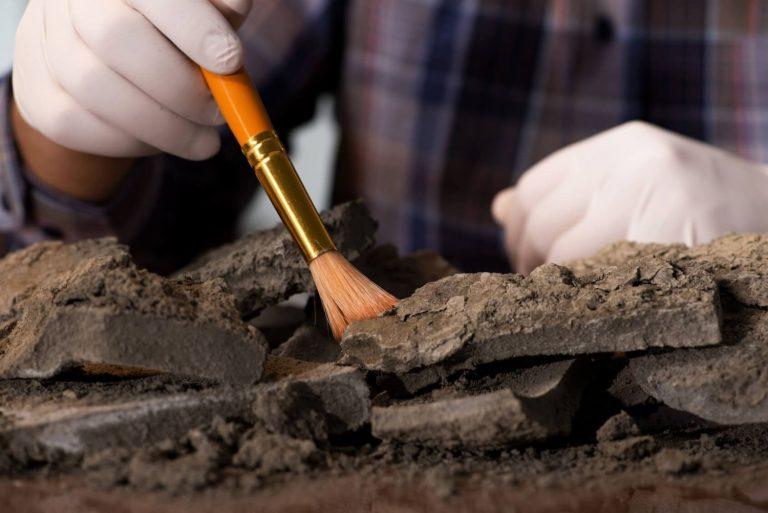 Qué es la arqueología