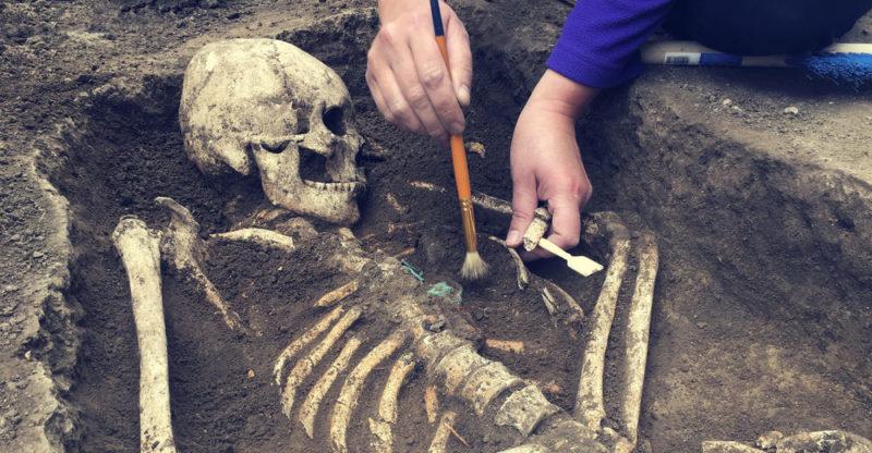 ¿Cuáles son las ramas de la arqueología?