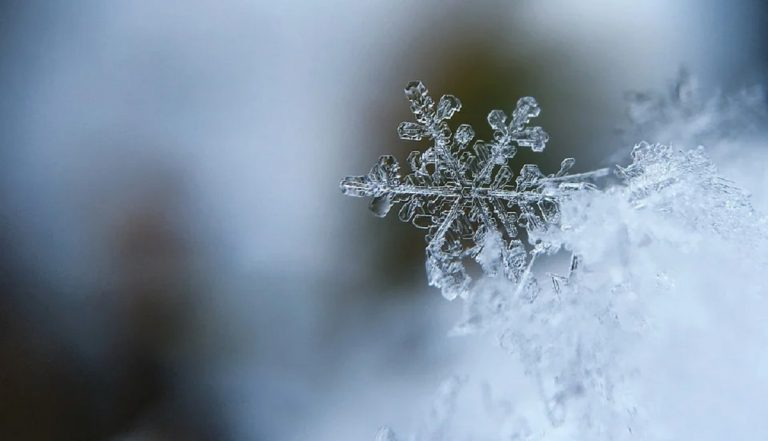 Climatizar tu hogar todo el año