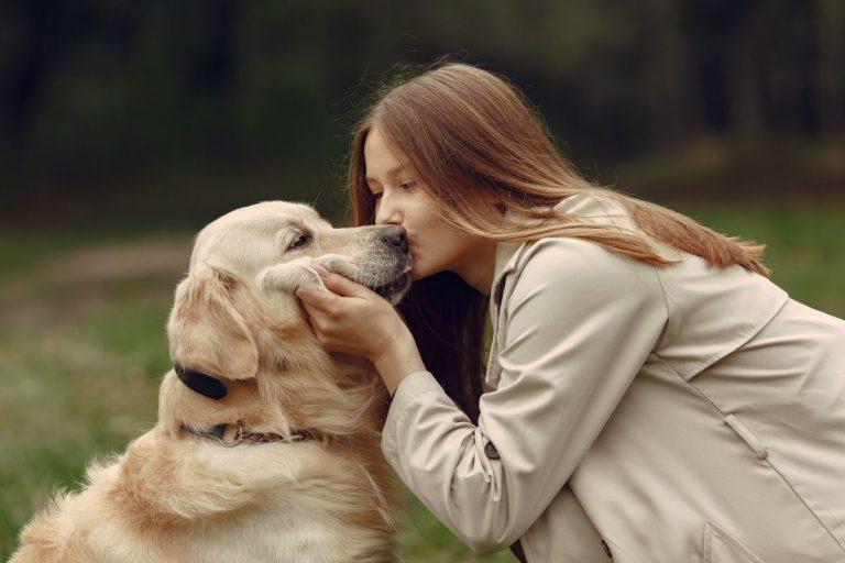Razones por las que tu perro ronca como un humano (y no te deja dormir)