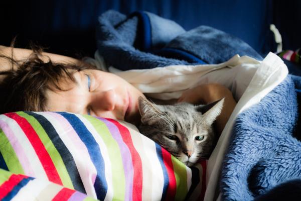 Por qué si tienes un gato deberías dormir más a menudo con él