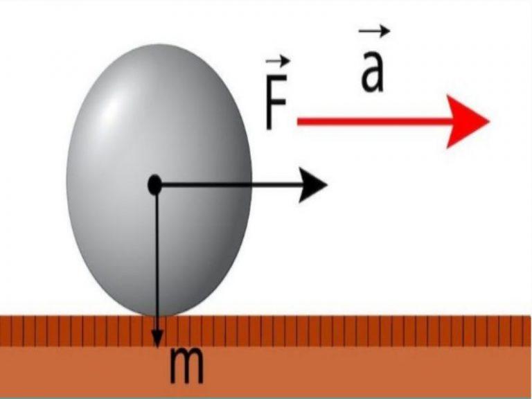 Qué es un Newton