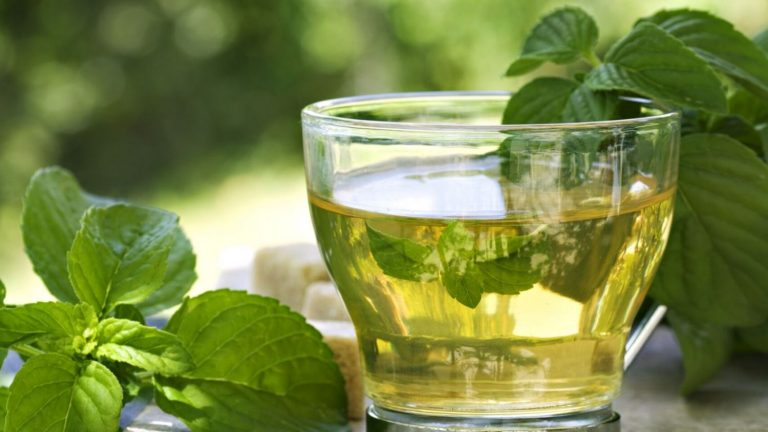 Té verde: los mitos y verdades sobre su milagroso poder para adelgazar