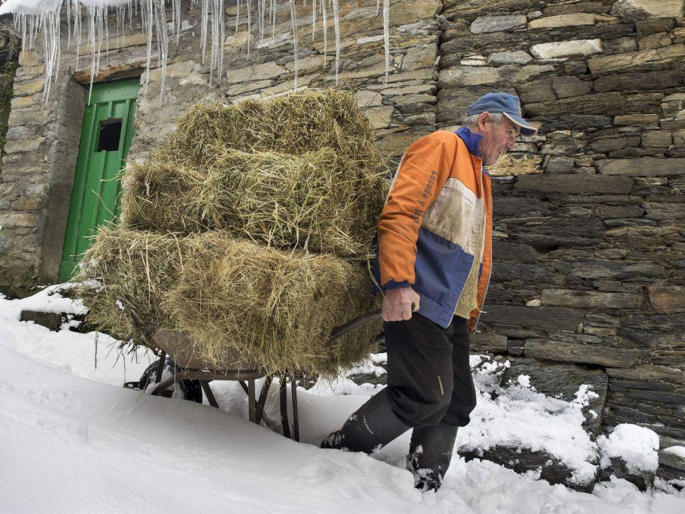 """Origen del refrán """"año de nieves, año de bienes"""""""