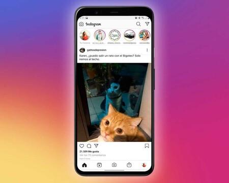 Instagram no cambia su algoritmo constantemente