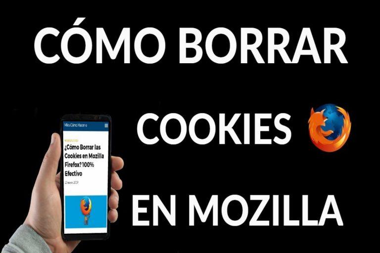 Cómo borrar las cookies en Mozilla Firefox