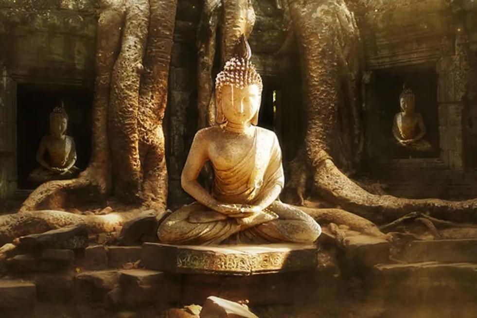 ¿Qué creen los budistas?