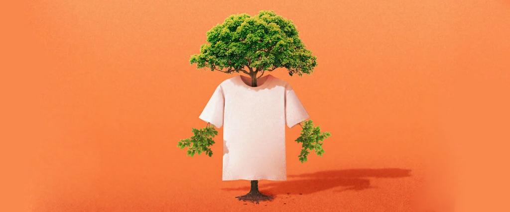 ¿Cómo evitar promover el greenwashing?