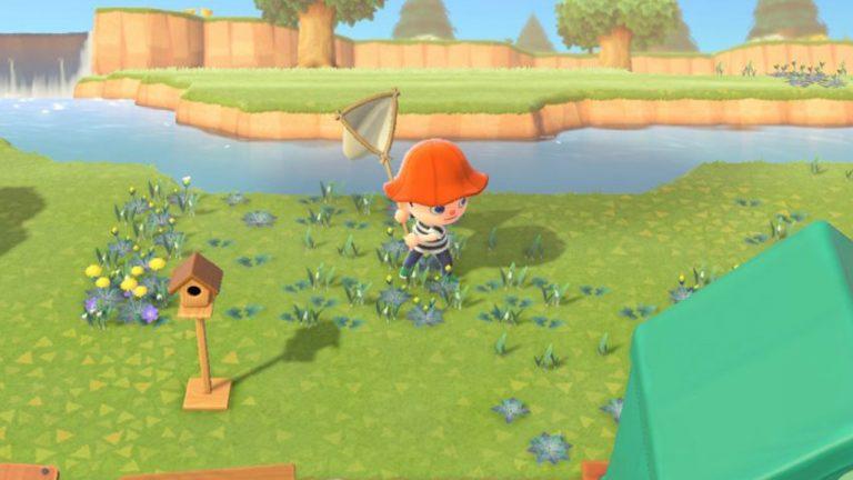 Animal Crossing: New Horizons: peces que puedes capturar en enero 2021