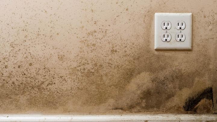 Causas de la humedad en las paredes