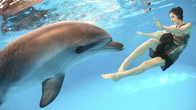 Dieta del delfín: así puedes deshacerte de un montón de kilos bebiendo agua de mar
