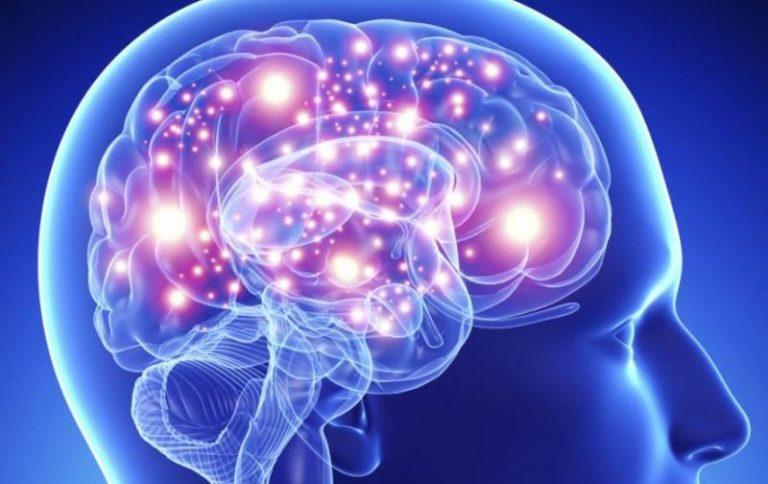 Esto es lo que le pasa a tu cerebro cuando te has enamorado