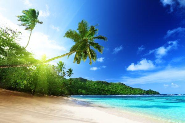 Majestic Island