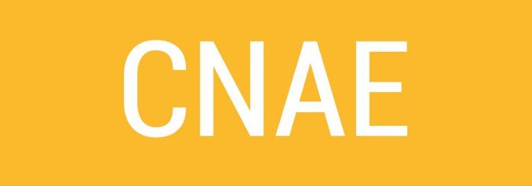 Qué es el CNAE