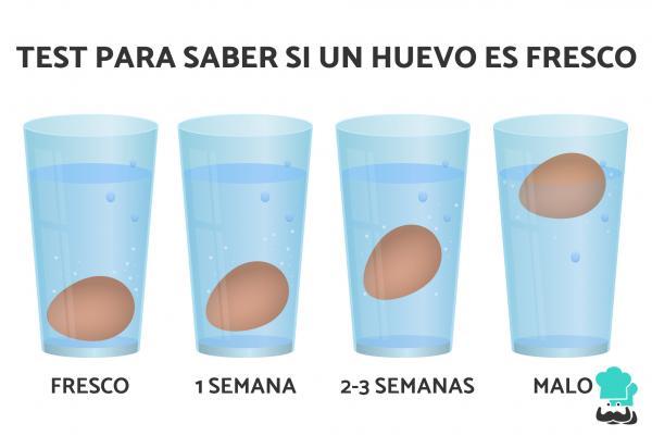 ¿Cómo saber si un huevo está bueno?