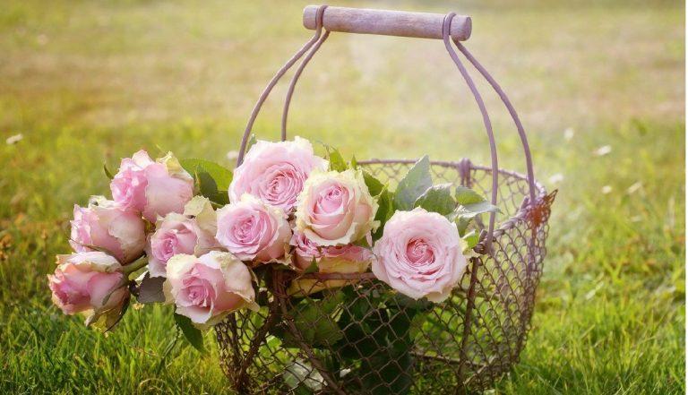 Consejos para decorar tu jardín