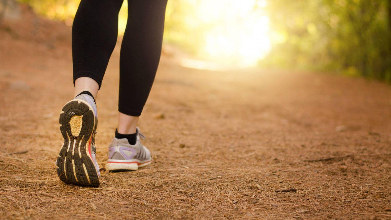 acelerador del metabolismo Natural