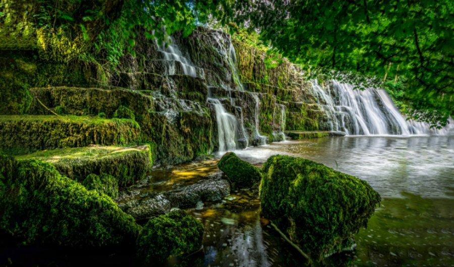 Funciones de la reserva natural