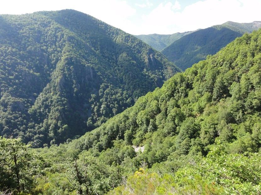 Historia de la reserva natural