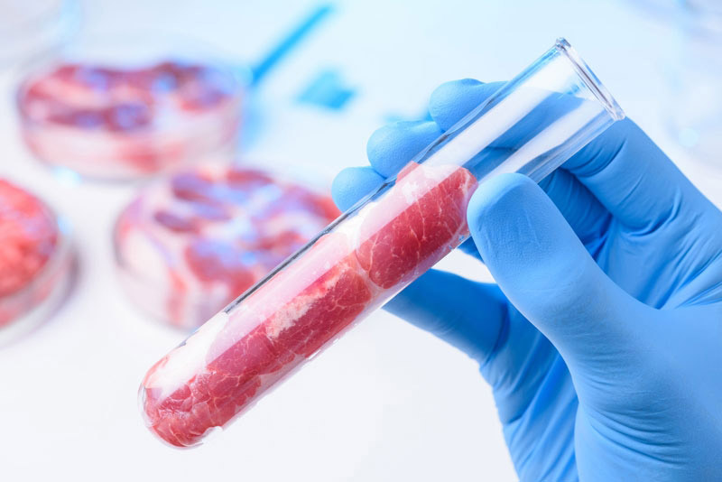 Qué es la carne celular