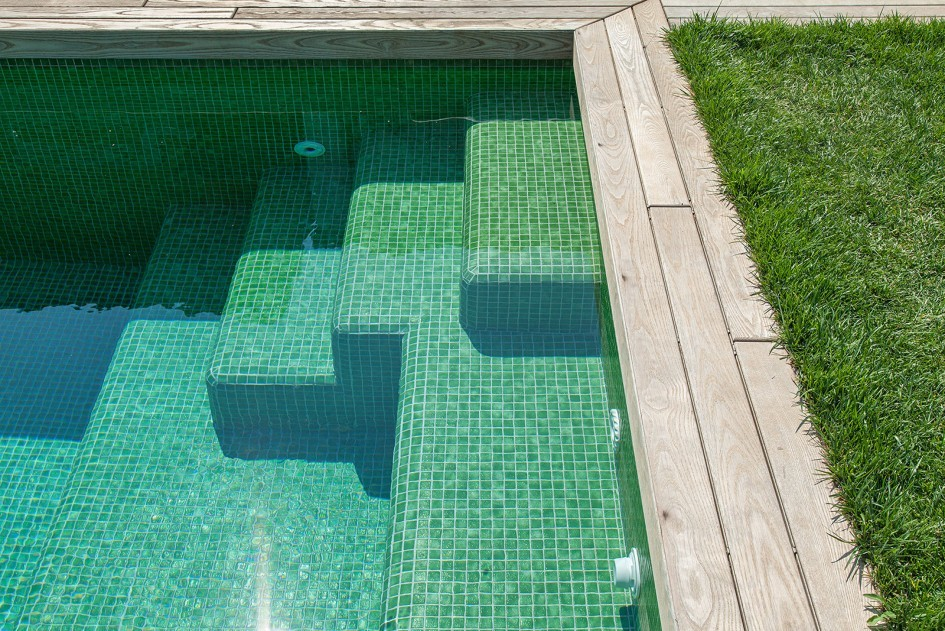 ¿Cómo solucionar el problema del agua verde?