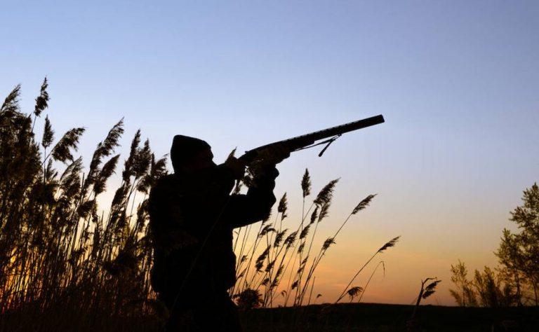Cómo renovar la licencia de caza por Internet