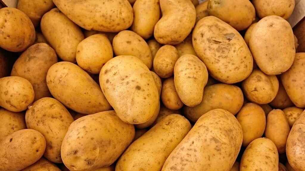 Las patatas no son europeas