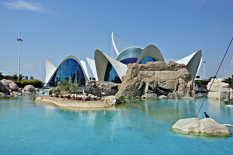 L' Oceanográfic  zoológicos de España