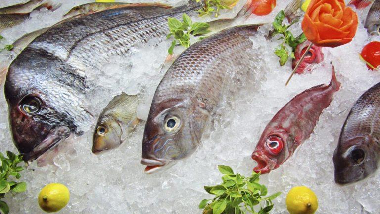 Pescados que debes congelar para que no te den anisakis