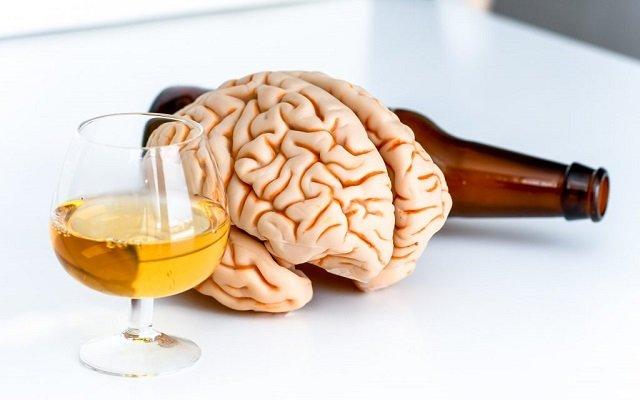 Esto es lo que le hace a tu cerebro una copa de alcohol