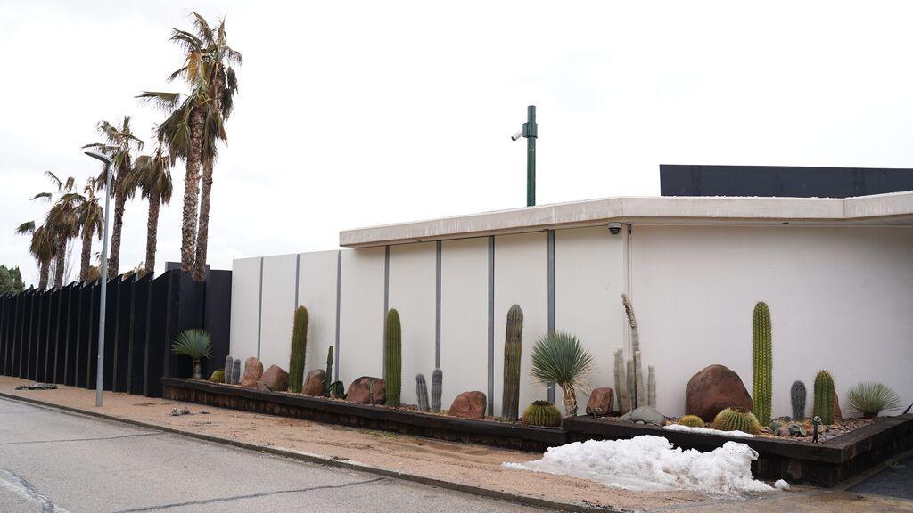 Vista de los cactus en la entrada de la casa de Pilar Rubio y Sergio Ramos.