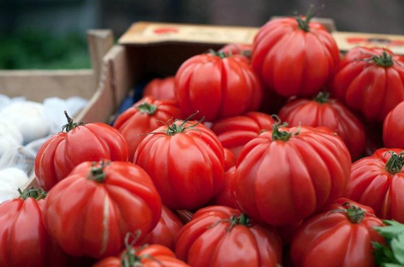 Salsa de tomate frito: la receta de Chicote para todo un año