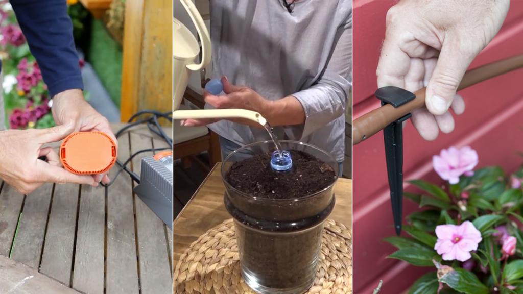 ¿Qué hacer para mantener el riego de las plantas en pleno verano?