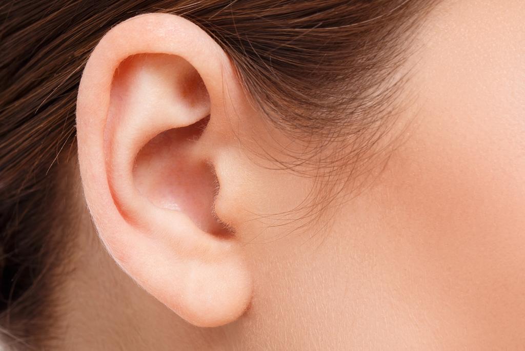 ¿Qué es el oído?