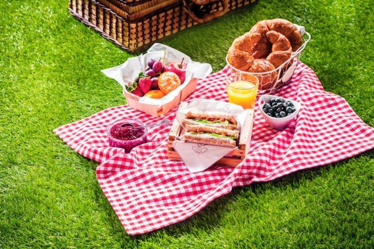 Cómo hacer un picnic y que no te invadan las hormigas