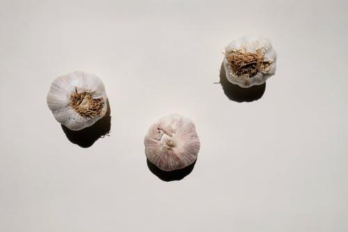 Hablemos sobre los tipos de ajos