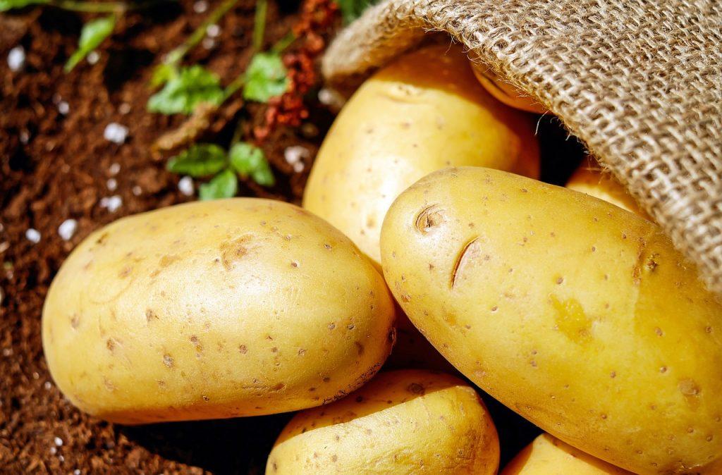 Las fascinaciones por las patatas fritas